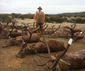 Souvenirs de chasse | Saison 2014/15 - III
